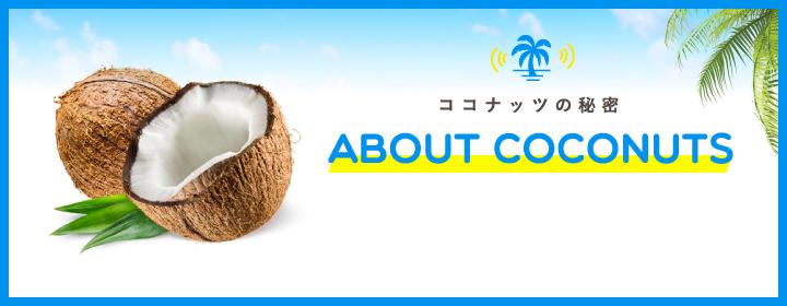 ココナッツの秘密